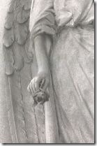 angeloerosa
